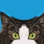 Che carattere! Gatti e libri di razza. Una nuova rubrica