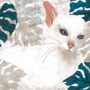 Il gatto balinese e il capolavoro di Hanya Yanagihara